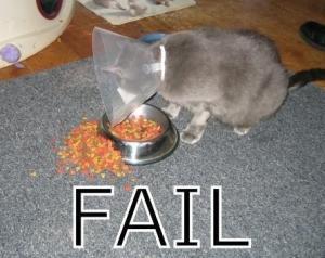 Fail at food
